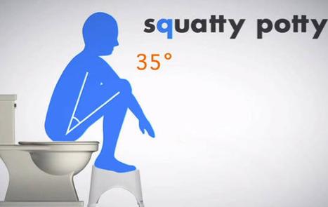 Healthy Poop | fitness | Scoop.it