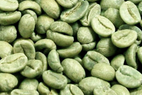 Green Coffee   Get The Inside Scoop on the Hottest Weight Loss Supplement on the Market   Green Coffee   Scoop.it