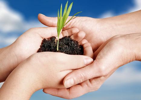 Jardinería y agricultura ecológica - arte y jardinería diseño de jardines   Agricultura ecológica y tintes naturales   Scoop.it