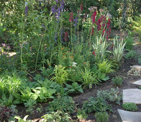 A Front-Yard Garden in No Time - Fine Gardening Article   Outside Ideas   Scoop.it