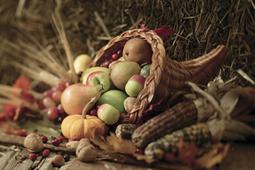 Attitude of gratitude | Resources for Catholic Faith Education | Scoop.it