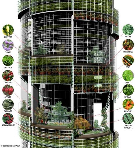 The Vertical Farm, agricultura urbana de altura ~ NQ | The Architecture of the City | Scoop.it