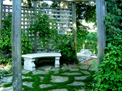 Landscaping Front Yard | Ideas Plans and Designs for Garden Landscaping | landscaping front yard | Scoop.it