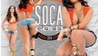 SOCA GOLD 2014 DEBUTED AT #1 ON US BILLBOARD REGGAE ALBUM ... - TropicalFete.com   SOCA ALL STARS   Scoop.it