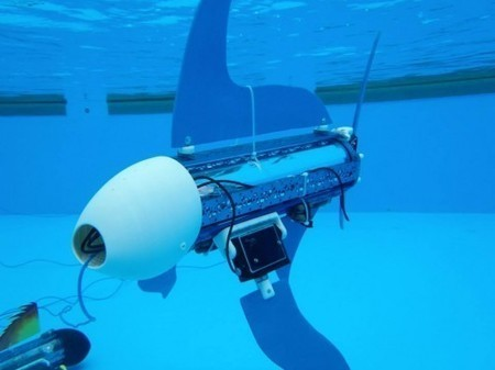 Naro-nanin educational robot fish takes a dip - Gizmag | Swiss Startup Founders | Scoop.it