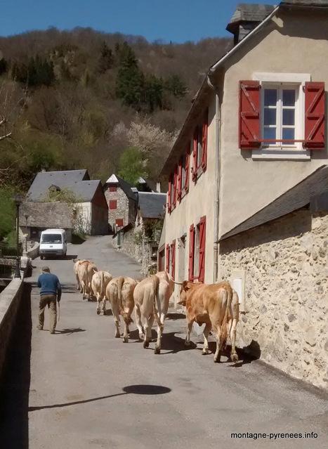 La pré-rentrée à Vignec   Vallée d'Aure - Pyrénées   Scoop.it