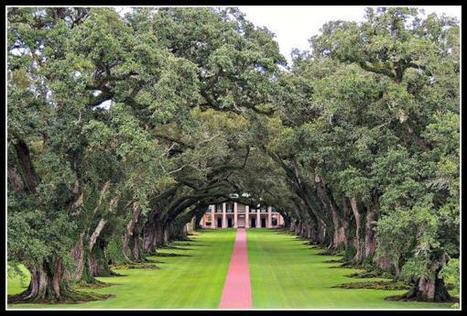Twitter / sunyforever: Oak Alley Plantation ... | Oak Alley Plantation: Things to see! | Scoop.it