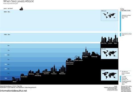 When Sea Levels Attack! — Information is Beautiful | Notions  Anglais Cycle terminal | Scoop.it
