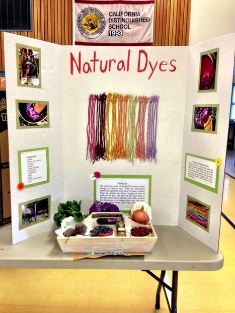Natural Dyes - a 4H Project | What's Cooking With Kids | Annie Haven | Haven Brand | Scoop.it