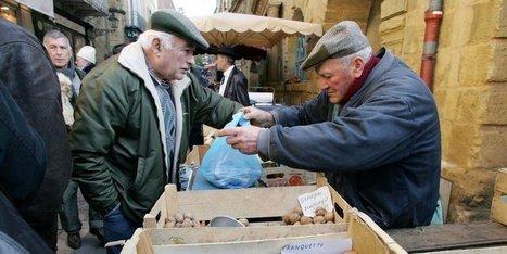 Sarlat : un avant-goût de la prochaine Fête de la noix | Agriculture en Dordogne | Scoop.it