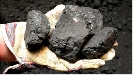Environmental review begins on HD Mining's coal mine | Sustain Our Earth | Scoop.it