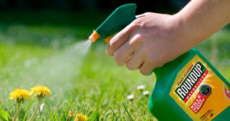 Glyphosate Found in Urine of 93 percent of Americans Tested | OrganicNews | Scoop.it