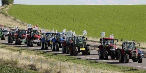 Crise de l'élevage: l'UE enquête sur les accords en de prix du lait et de la viande en France | De la Fourche à la Fourchette (Agriculture Agroalimentaire) | Scoop.it