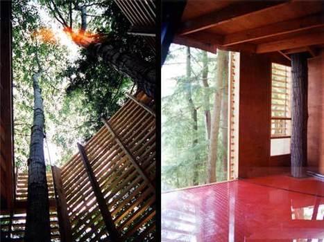 "ARCKiT >§< TreeHouse ""Casas na árvore"" verdadeiramente inspiradoras! (parte 2) | ART ~ Design ~ Cooltour | Scoop.it"