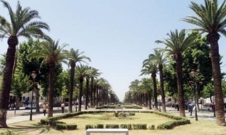 Conseil de la région Fès-Boulemane : Renforcement de la coopération avec les partenaires régionaux - LE MATIN.ma   Actualités des régions du Maroc   Scoop.it