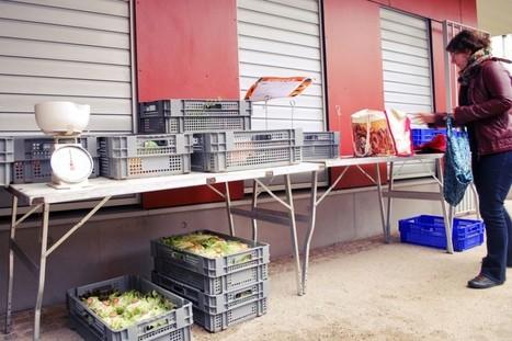 Circuits courts (3/6) : le business des paniers alimentaires | Association solidaire, aide alimentaire , aide aux personnes en difficulté | Scoop.it