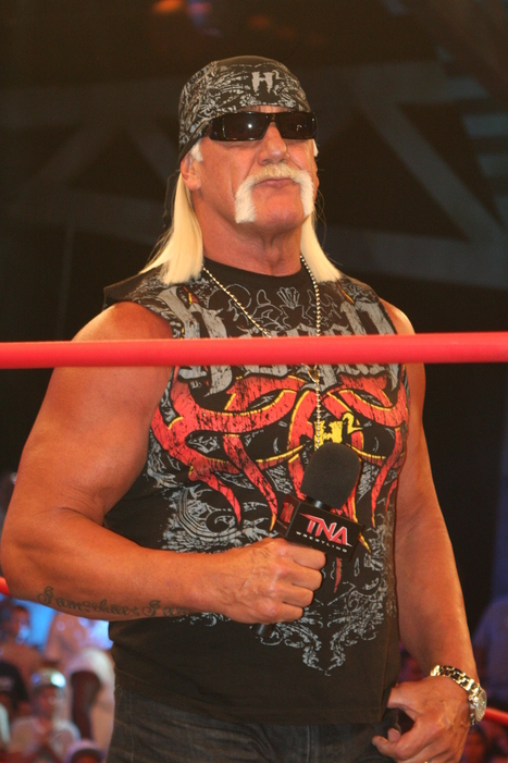 Hulk Hogan's WWE Return - Blabber | Celebrity News | Scoop.it
