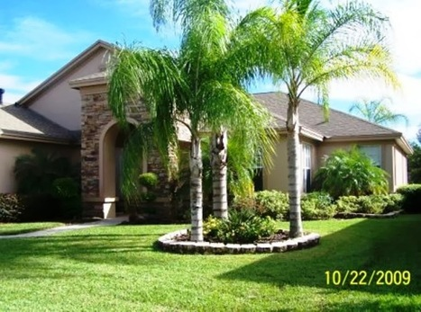 Get to know more about Landscaping Tampa | Landscaping | Scoop.it