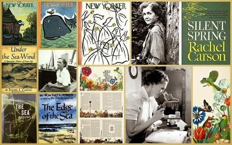 El Blog de La Tabla: Primavera Silenciosa: Rachel Carson | AGRICULTURA ORGANICA | Scoop.it