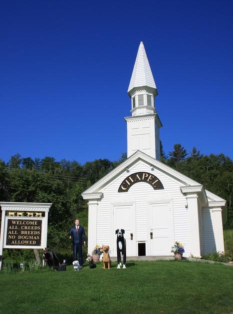 Zelda's Song at Stephen Huneck's the Dog Chapel, August, 2014 | Cats | Scoop.it