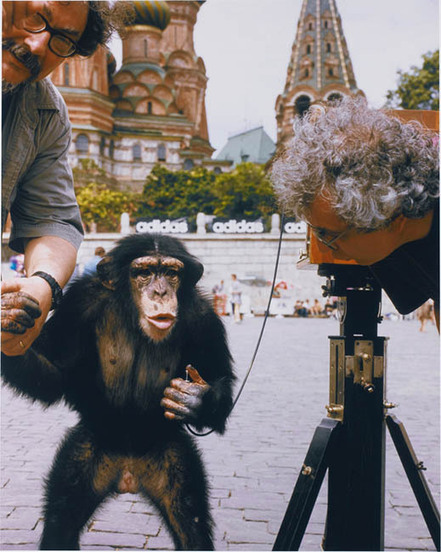 Chimpanzee Photographer's Work Sells For Over $75,000 at Auction   Photography News Journal   Scoop.it