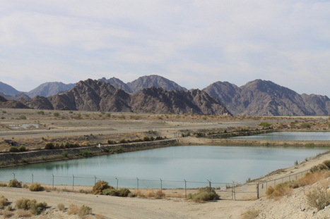Stanford's Water in the West program offers new way to view groundwater resources | Sustain Our Earth | Scoop.it
