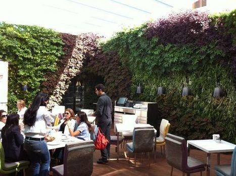 Sweet Tea Green Wall, Beirut / Lebanon by Green Studios | Vertical Farm - Food Factory | Scoop.it