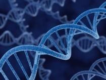 Biotechnologie - L'ADN sera-t-il le disque dur du futur? | Biotechnologies | Scoop.it