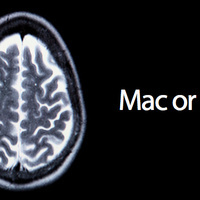 Your Brain Scan Looks Different on Mac and PC | Journey to the Center of the Interwebs | Scoop.it