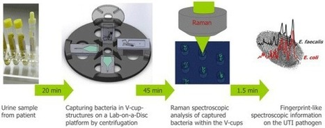 Lab-on-a-Disc Device Detects Urinary Tract Infections in About an Hour | Medgadget | Shaping the Future of Medical Technology | Scoop.it