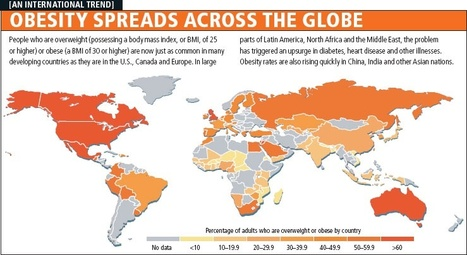 Obesity worldwide: the map of the world's weight | Summer Utah Geographic Alliance Newsletter | Scoop.it