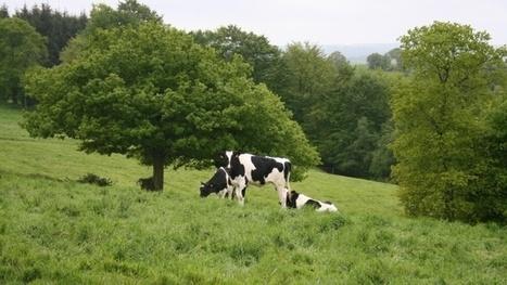 L'agriculture, à la fois problème et solution Climat | Maraichage-Horticulture | Scoop.it