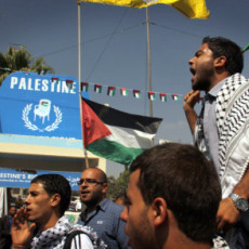 Palestinians Disagree On What 'Palestinian Spring' Could Be | Human Rights and the Will to be free | Scoop.it