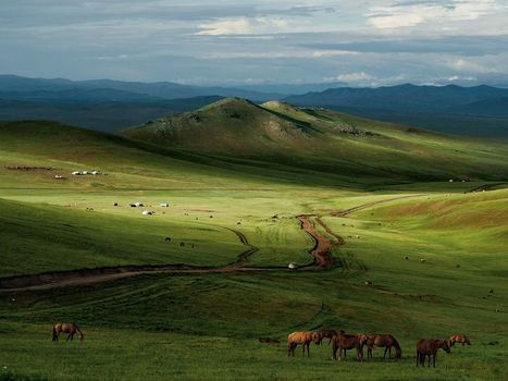 Horses, Mongolian Steppe - National Geographic Photo of the Day | The Mongols | Scoop.it