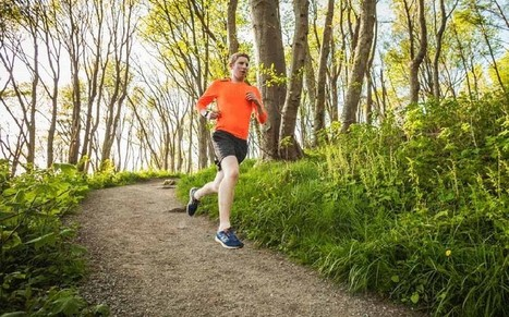 The five best personal fitness apps - Telegraph   online marketing   Scoop.it