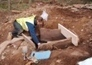 ECOSSE : 'Active' Bronze Age woman found in Highland woods | World Neolithic | Scoop.it