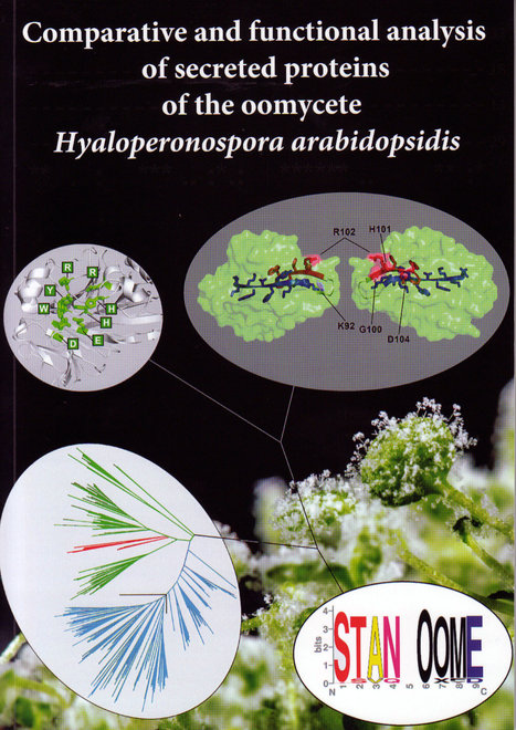 Ph.D. Thesis: Comparative and functional analysis of secreted proteins of the oomycete Hyaloperonospora arabidopsidis (2013) | Plants and Microbes | Scoop.it