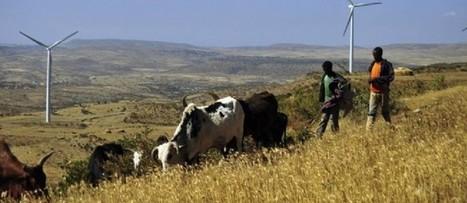 Afrique-Climat - L'Ethiopie ouvre le bal du financement du Fonds Spécial Clim-Dev | Actualités Afrique | Scoop.it