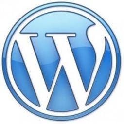 Best Practices in WordPress Website Development | xhtmlchamps blog | Web Design and Development | Scoop.it