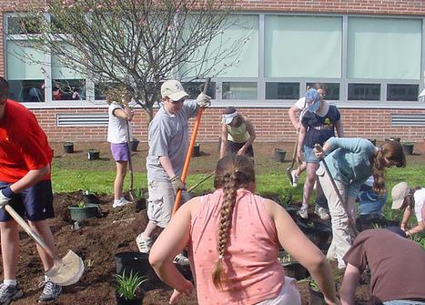 The School Garden Network   Food & Nutrition   Scoop.it