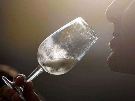 A bottle of wine a day is not bad for you and abstaining is worse than drinking, scientist claims   Wine n Beer Fun & Facts   Scoop.it