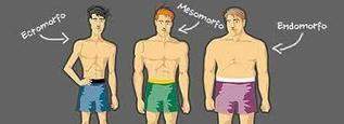 Comidas Para Aumentar Masa Muscular | online marketing | Scoop.it