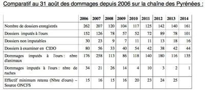 Dégâts d'ours dans les Pyrénées : les chiffres prouvent que l'ours ne met pas en péril le pastoralisme   Responsabilité humaine et environnement   Scoop.it