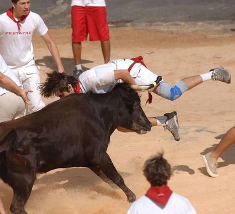 Les courses de vaches de Bayonne: des festivités sportives ! | Le sport en milieu urbain | Scoop.it