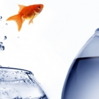 If You can Dream it, You can Do It | Kreativitätsdenken | Scoop.it