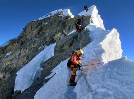 Meet the First Dog to Climb Mount Everest | Everest | Scoop.it