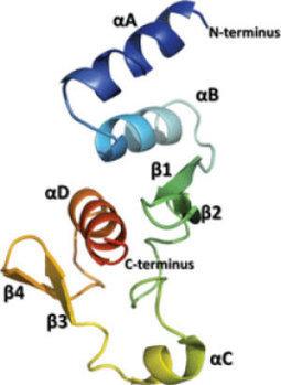 Protein secrets of Ebola virus | Proteomics | Scoop.it