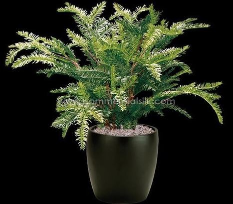 Artificial Sequoia Plant 18 | Artificial, Silk Trees Knowledge Center | Scoop.it