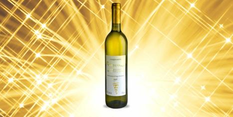 Le Marche Wine in US | Mezzanotte 2008 Verdemare Verdicchio dei Castelli di Jesi DOC Riserva | Wines and People | Scoop.it