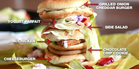 Here's a Sandwich Made of EVERYTHING on the McDonald's Dollar Menu | Food Science and Technology | Scoop.it
